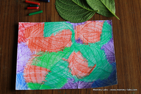 Botanic Garden Art Activity_480