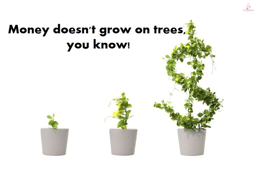 american dollar dont grow on trees These trees grow best in zones 5 to 9, and require full to partial sunlight  eucalyptus tree silver dollar eucalyptus  these evergreen trees don't need .