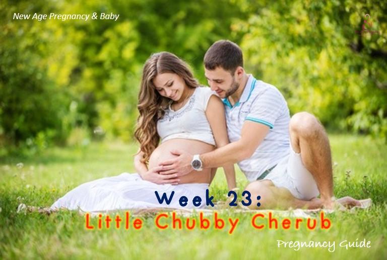 week to week pregnancy guide