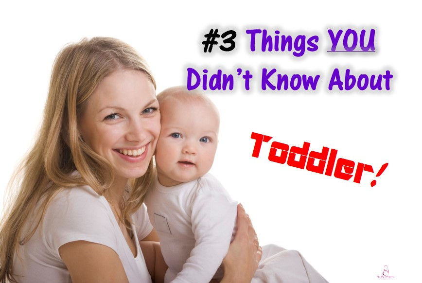 toddler's development