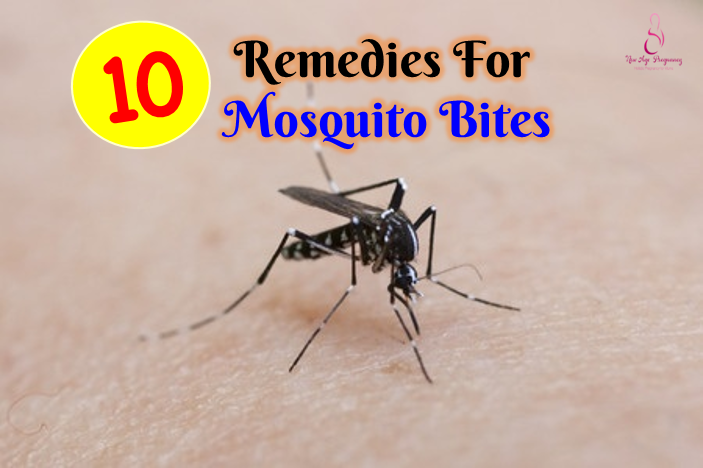 10 Effective Remedies For Mosquito Bites