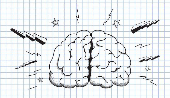 brain development program for toddler